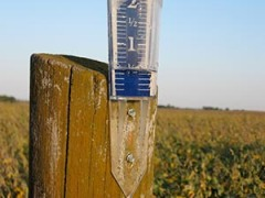 Rain gauge showing a half inch of rain