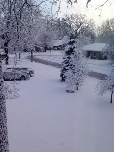 April 23, 2013 from my window. A spring winter wonderland.