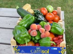 gardenproduce1